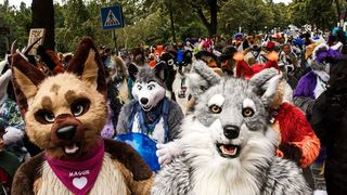 More Than Just a Pretty Face: Unmasking Furry Fandom