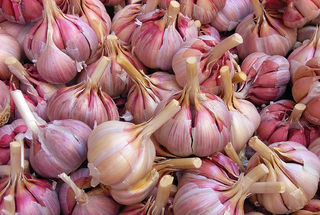 Eating Garlic Makes Men Smell More Attractive | Psychology Today