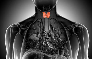 Is It ADHD or a Thyroid Disorder? | Psychology Today