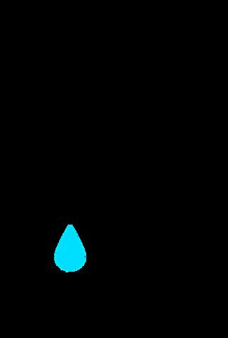 Elionas/Pixabay Public Domain