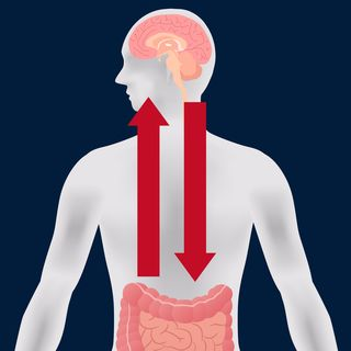 Does Gut Microbiome Influence Mindset and Mental Toughness?