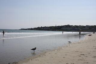 Ogunquit Beach2/Seaburn