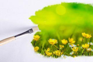 """""""Paintbrush, Outdoor, Flower, Flowers, Sunlight"""" by PublicDomainPictures / Pixabay / CC0 Public Domain"""