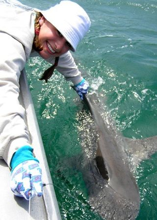 Blake Chapman with a shark; courtesy of Dr. Chapman
