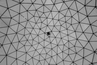 By Michael Day - Geodesic, CC BY 2.0