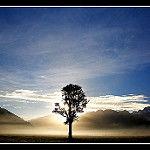 Anthony/Flickr