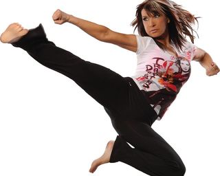 Cynthia Rothrock used with permission
