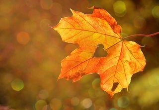 Image by Castleguard, pixabay, CC0.