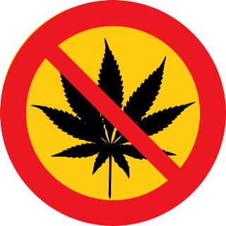 Cannabis Addiction Is Linked to Higher Levels of Cortisol
