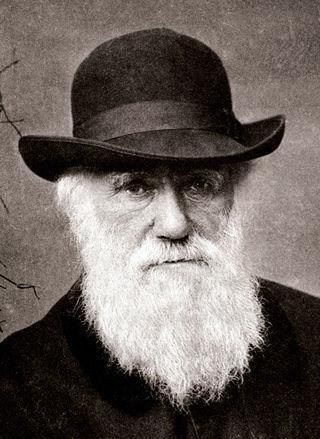Charles Darwin/Public Domain