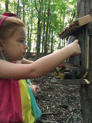 Fairy House 2/Bonnie Seaburn
