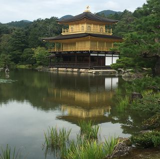 Laurie Helgoe - The Golden Pavilion, Kyoto