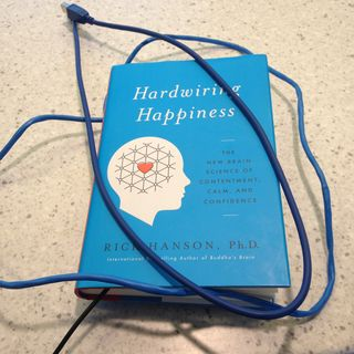What is two ideas for behavioral happiness?