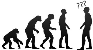 //commons.wikimedia.org/wiki/File:Human_evolution.svg?uselang=en-gb, CC BY-SA 3.0, https://commons.wikimedia.org/w/index.php?curid=53150354