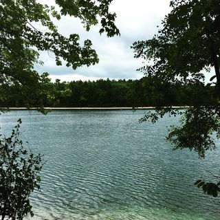 Walden Pond Emily Deans