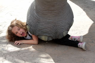 Flicker, Kids Giving You a Problem? Hire an Elephant, by peasap CC by 2.0