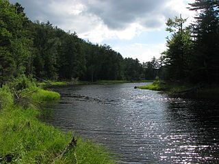 """Bog River Flow,"" by Mwanner, Commons.wikimedia.org"