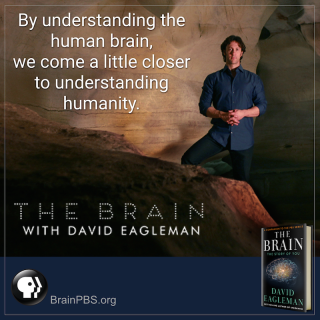 David Eagleman, used with permission