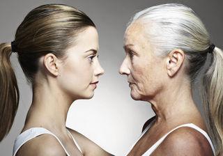 Snapfone 1437 aging genes identified