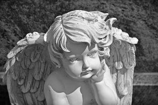 bernswaelz/Pixabay