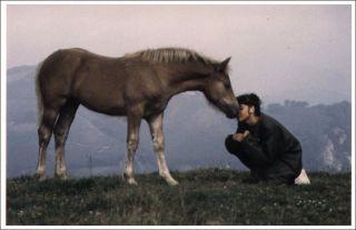 "Ferran Jordà/Flickr ""l'amor és finit i...et l'amour fini"" used pursuant to a creative commons licence."