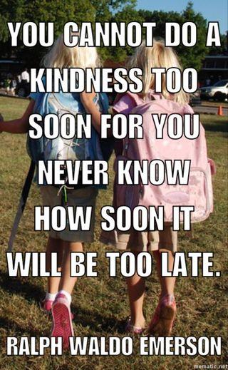 Image from freeimages.com, meme ©Pamela Paresky