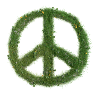 https://pixabay.com/en/peace-sign-peace-sign-love-harmony-1043093/
