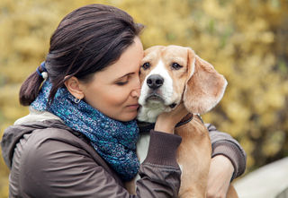 the data says don t hug the dog psychology today