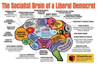 Political Brains © Oleg Atbashian @ The People's Cube.