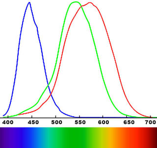 Sensitivity of three different color receptors in eye.  Original by author, including elements from Wikipedia Commons.