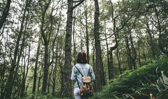 Woman in the woods, Unsplash