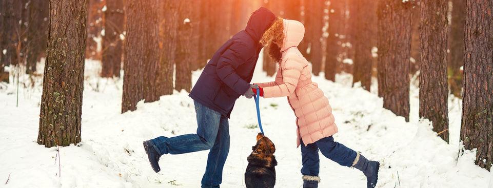 Vvvita/Shutterstock