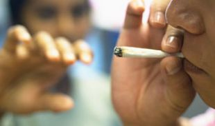 Marijuana Use Damages the Teenage Brain