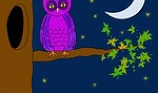 Night Owls and Early Risers