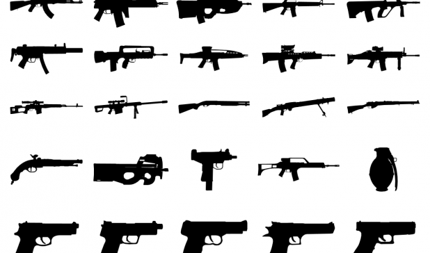 The Bipolar Gun Debate