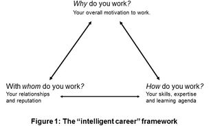 What Is an Intelligent Career?