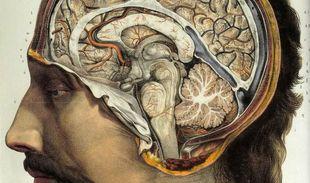Will New Brain Research Revolutionize Mental Health Care?