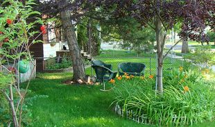 4 Ways Your Front Yard Can Make You Happier