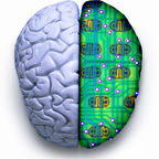 When Tackling The Brain, Don't Forget The Mind