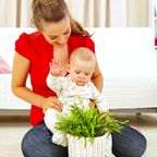 Test Your Baby's Built-in Plant Caution