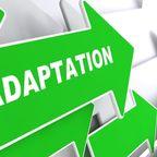 Mental Illness or an Adaptation?