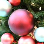 Seasonal Affective Disorder and the Holiday Blues: Which Do you have and tips to avoid the Holiday Blues?