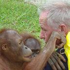 Orangutans, Mel Gibson and the bite test