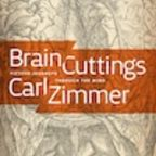 Welcome to Brain Cuttings!