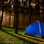 Could Camping Help Your Insomnia?