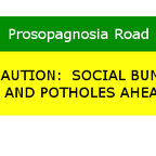 Overcoming Potholes: Bumps in the Prosopagnosia Road