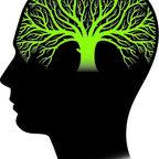 Psychological Ecology