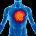 The Sleep-Heart Connection