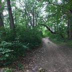 County Park/Seaburn