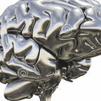 Dreamstime/Metallic model human brain